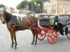 Tour in Carrozza